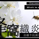 【3分でわかる】蜂窩織炎とは?治療や抗菌薬まとめ